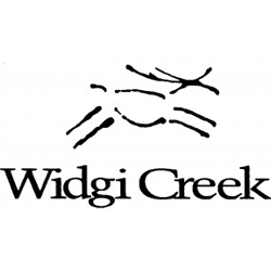 widgi-logo
